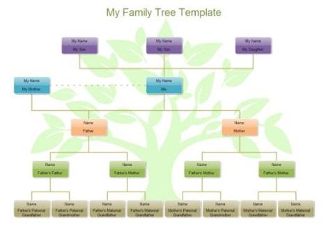 家系図ソフト - 家系図を自動生成【EdrawMax】
