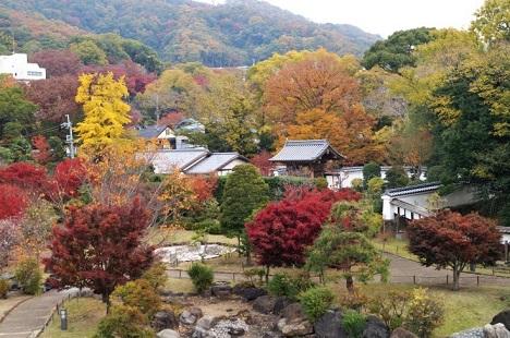 池田城跡公園の紅葉